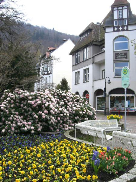Bad Harzburg